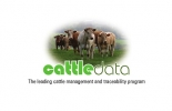Cattledata